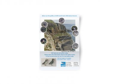 Puffin Map – RSPB South Stack Cliffs